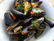 Freshly caught mussels